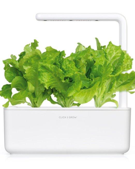 SG3_white_front_lettuce_1200x1200_db840f75-6756-4ddb-9b50-b96a2bef0c1e